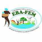 17- EBA-FEM